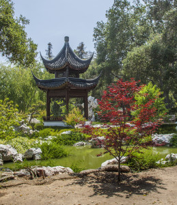 Huntington Gardens and Art Museums @ Huntington Gardens | San Marino | California | United States